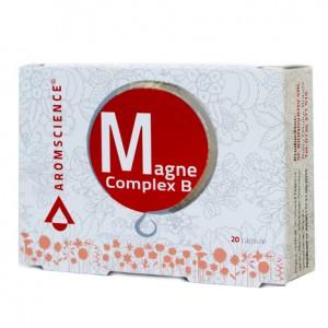 magne complex b